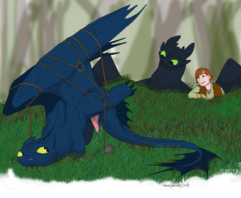abused train to your how dragon hiccup fanfiction My little pony night glider